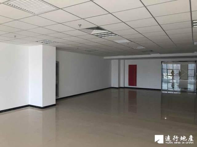 草桥 中林置业大厦 170平米 精装修