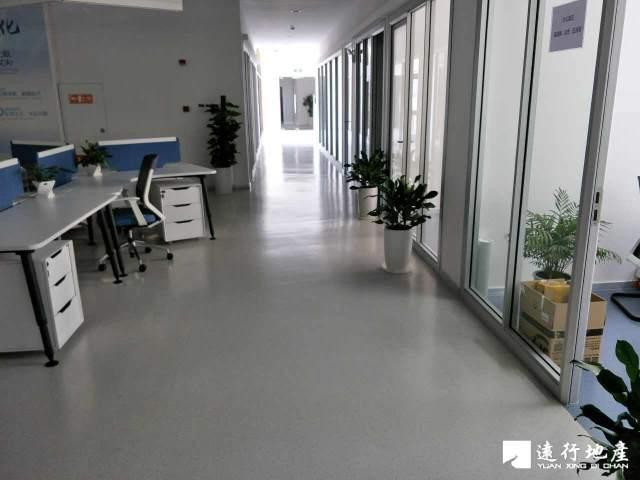 嘉定城区 潇峰大厦 560平米 精装修