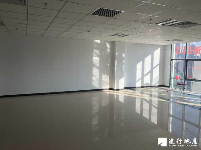 草桥 中林置业大厦 244平米